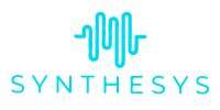 Synthesys Business (500K)
